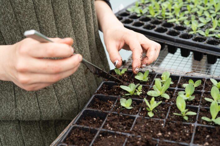 aiatööd märtsis